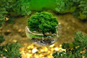 Introdução à Auditoria e Perícia Ambiental
