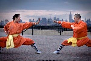 Técnicas de Kung Fu