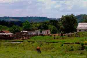 Introdução à avaliação de imóvel rural