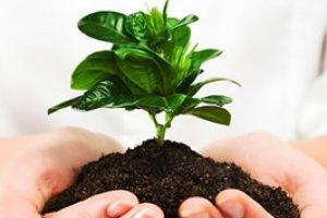 Introdução à Legislação Ambiental
