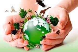 Meio Ambiente e Futuro