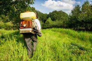 Introdução ao Controle de Pragas e Agrotóxicos